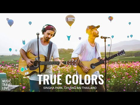 True Colors - Music Travel Love (Singha Park - Chiang Rai, Thailand) (Cyndi Lauper Cover) youtube downloader